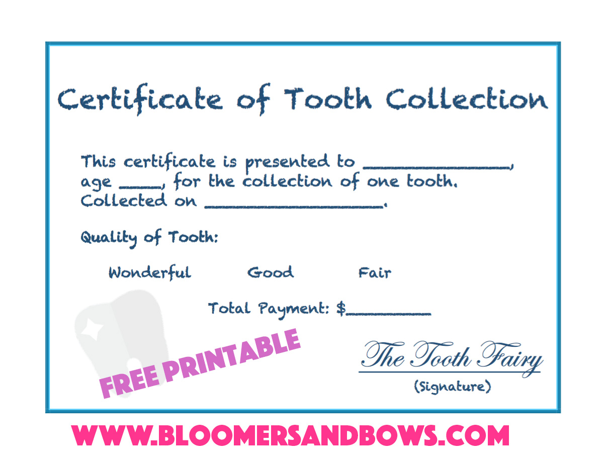 Tooth Fairy Certificate for the Collection of Teeth | Free Printout | Bloomers and Bows